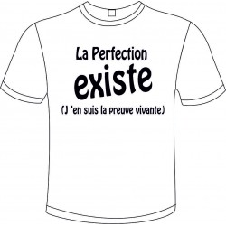 "Tee-shirt Blanc B&C ""La Perfection Existe"" Homme Exact 190"