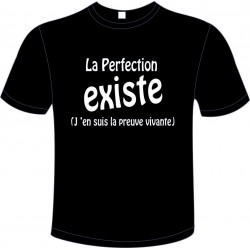 "Tee-shirt Noir B&C ""La Perfection Existe"" Homme Exact 190"